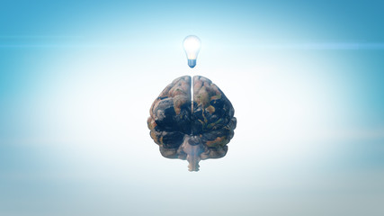 3D Brain model textured with Earth colors and lightbulb inspiration