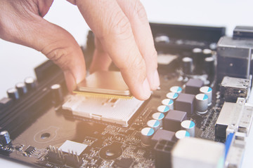 Wall Mural - Technician installing CPU chip microprocessor to socket on motherboard