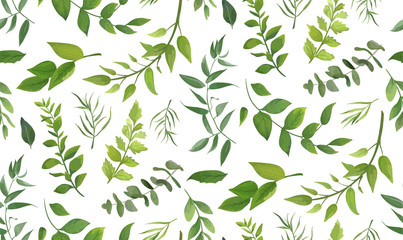 Seamless pattern of Eucalyptus palm fern different tree, foliage natural branches, green leaves, herbs, tropical plant hand drawn watercolor Vector fresh beauty rustic eco friendly background on white Fotoväggar