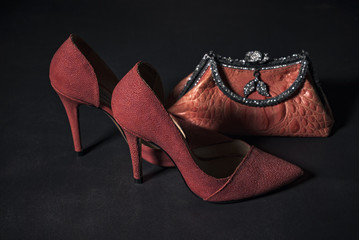 Women's luxury red shoes and purse
