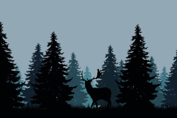 coniferous forest with a fallow deer