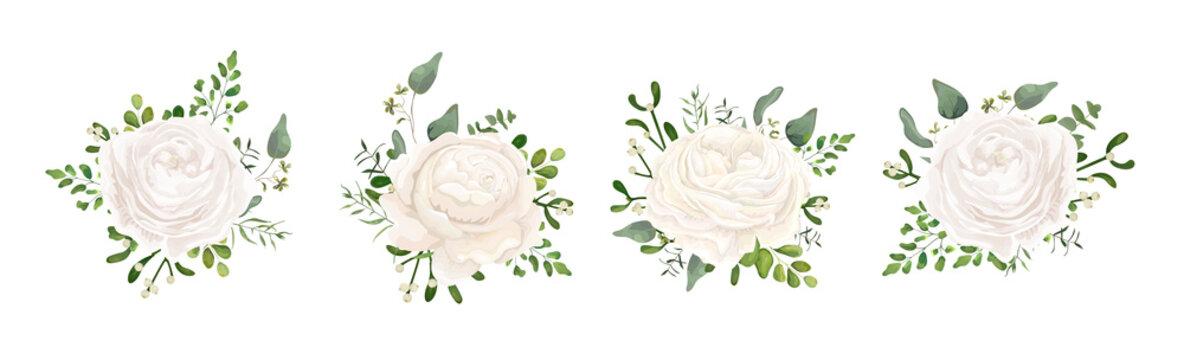 Vector floral bouquet design: white garden Ranunculus, Rose flower, fern, eucalyptus, mistletoe branch greenery leaves berry. Wedding vector invite card Watercolor watercolor cute designer element set