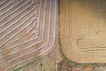 Patterns on harvested wheat field