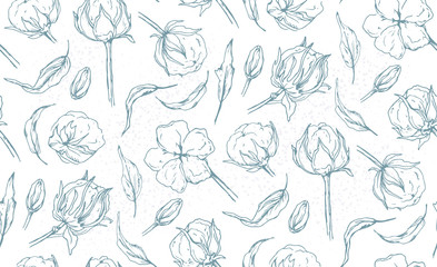 Seamless pattern with cotton ball flower, leaves hand drawn light blue linear natural designer elements. Beautiful, cute lovely elegant wallpaper, textile fabric design. Tender linear graphic print