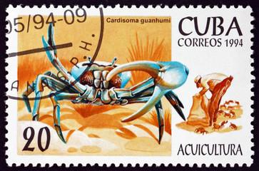 Postage stamp Cuba 1994 blue land crab
