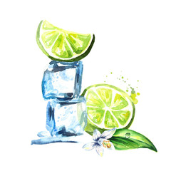 Ice cubes and lime with flower isolated on white background. Watercolor hand drawn illustration