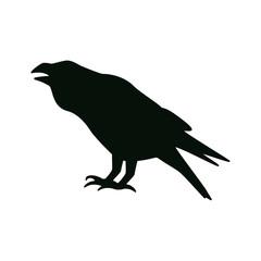 raven icon