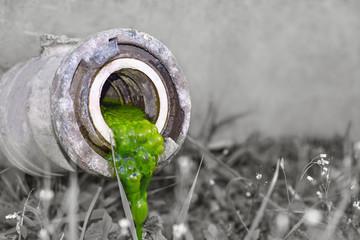 Abflussrohr mit grüner, schleimiger Substanz