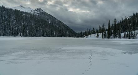 A Montana Winter