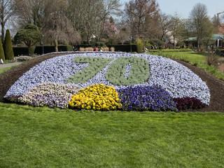 Lieblich 70 Jahr Jubiläum Blumen Beet Im Park