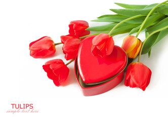 Tulips and box as heart isolated on white background. Valentine's day concept. Love concept