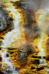 Molten lava runs from Firehole Geyser in Yellowstone.
