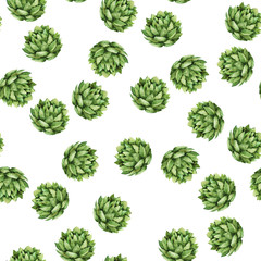 Seamless pattern with fresh green succulents on white background. Hand drawn watercolor illustration.