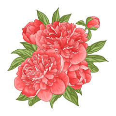 Floral background with a bouquet of peony flowers