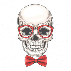 Hand drawn illustration of skull in glasses and a bow tie