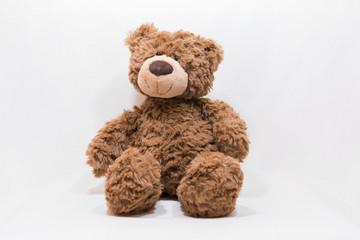 Teddy Bear Stock