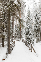 a bridge in the snow-covered forest near The Raudanjoki river, Rovaniemi, Finland.