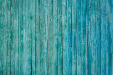 Texture wooden wall with peeling green paint.