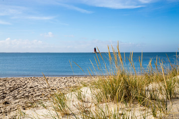 View of Delaware Bay from the Beach at Cape Henlopen, Lewes, Delaware