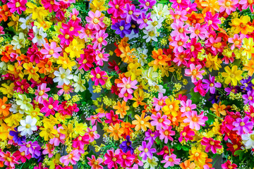 The small colorful fabric flowers backdrop or background for decoratin to make place romantic.