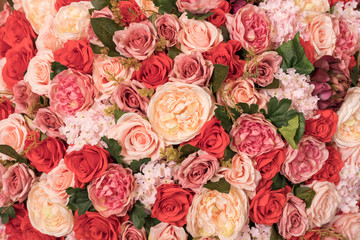 Close up Background texture of Pink, Orange and Red roses pattren. Valentines Day concept