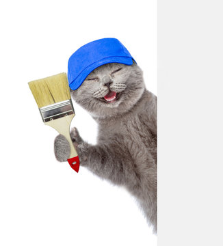 Funny cat in blue hat with paint brush behind white banner. isolated on white background