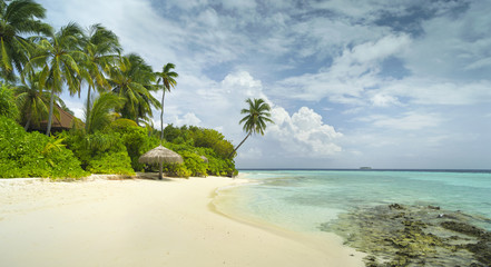 beautiful sand beach with palm trees and coral reef in sunshine day on Maldives island