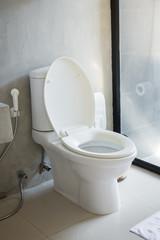 Toilet seat in bathroom interior