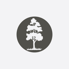 Tree icon. Forest symbol. Flat web sign on white background. Vector