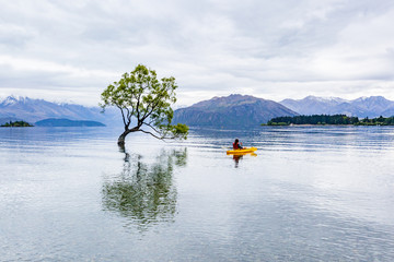 Wanaka Tree Reflection and Canoe Adventure