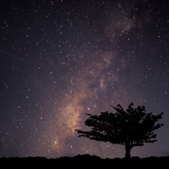 Night landscape with colorful milky way and stars