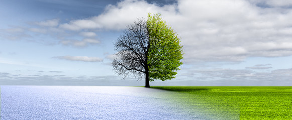 Winter-Frühling