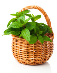 fresh mint in a wicker basket, on a white background