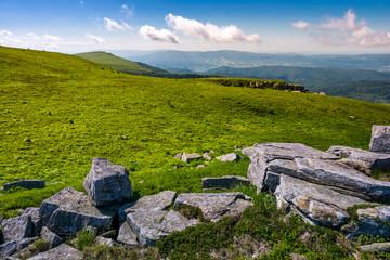 grassy alpine meadow of Polonina Runa. beautiful nature of Carpathian mountains in summertime