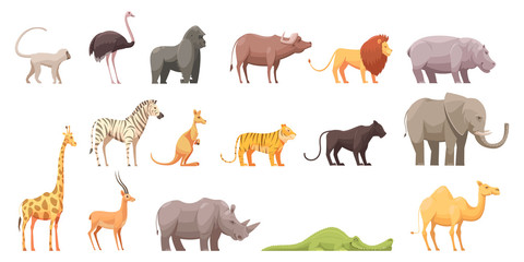 Wild Tropical Animals Set