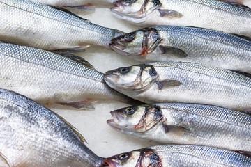 fresh russian fish 5