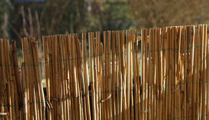 wooden bamboo fence in garden