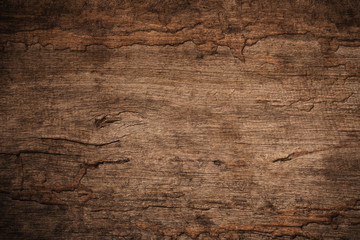 Acrylic Prints Wood Wood decay with wood termites,Old grunge dark textured wooden background,The surface of the old brown wood texture
