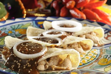 """Corn tortillas stuffed with shredded chicken and battered with """"mole"""" (pepper sauce)"""