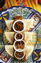 "Corn tortillas stuffed with shredded chicken and battered with ""mole"" (pepper sauce)"