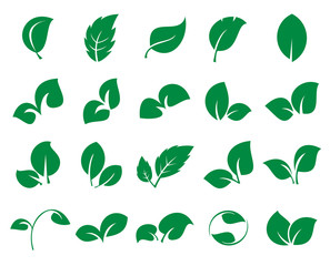 Leaf icons. Collection of 20 green symbols of leaves isolated on a white background. Vector illustration