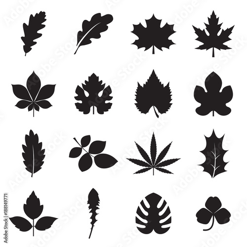 Leaf Icons 16 Black Symbols Of Leaves Such Plants As Oak Maple