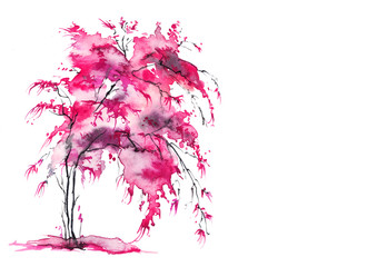 Single cherry sakura pink tree isolated. Watercolor drawing. A tree with earrings, a bush, a bloom, a cherry. Art illustration.