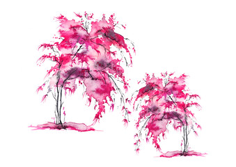 A group of pink trees. Watercolor drawing. A tree with earrings, a bush, a bloom, a cherry. Art illustration.