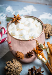 Hot chocolate with marshmallows, cinnamon and anise, served with christmas decoration. Selective focus.