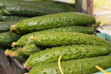 Green fresh cucumber in box on sale