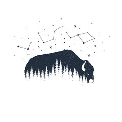 Hand drawn buffalo and constellations textured vector illustrations.