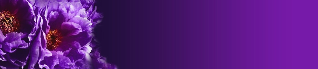 Dark mystic flower background  --  Ultra violet
