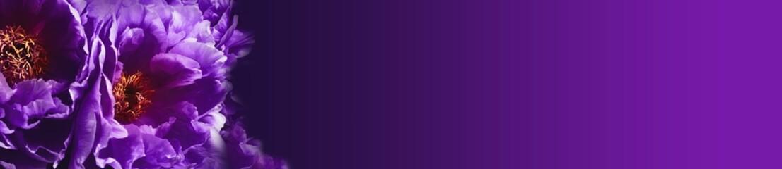 Dark mystic flower background  --  Ultra violet Wall mural