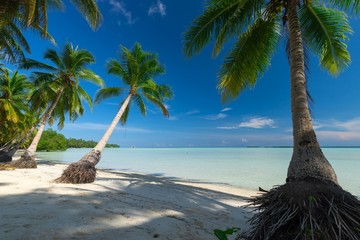 Paradise deserted tropical beach in Indonesia